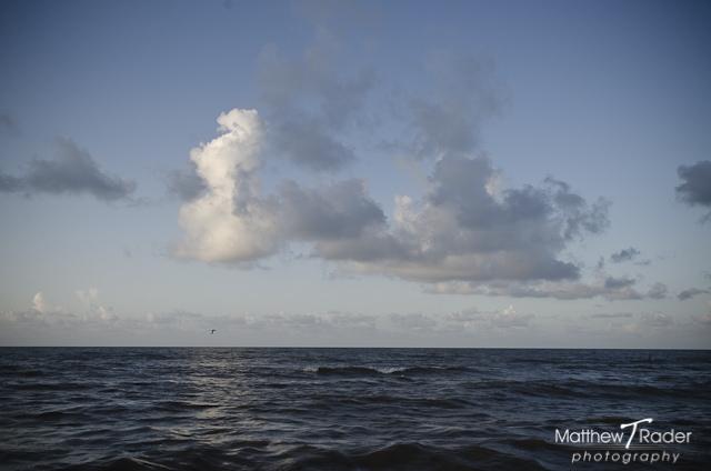 Galveston Seascapes