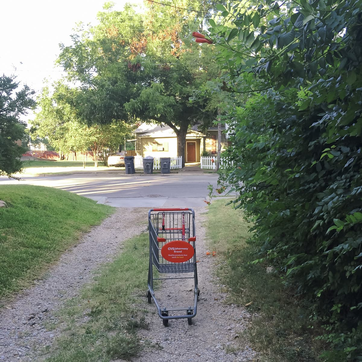 Abandoned Shopping Cart by Matthew T Rader