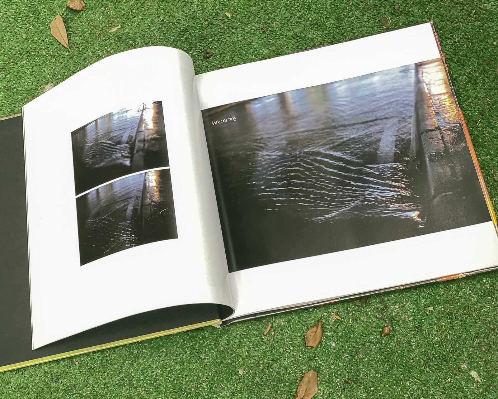 Find The One, Photo Book by Matthew T Rader