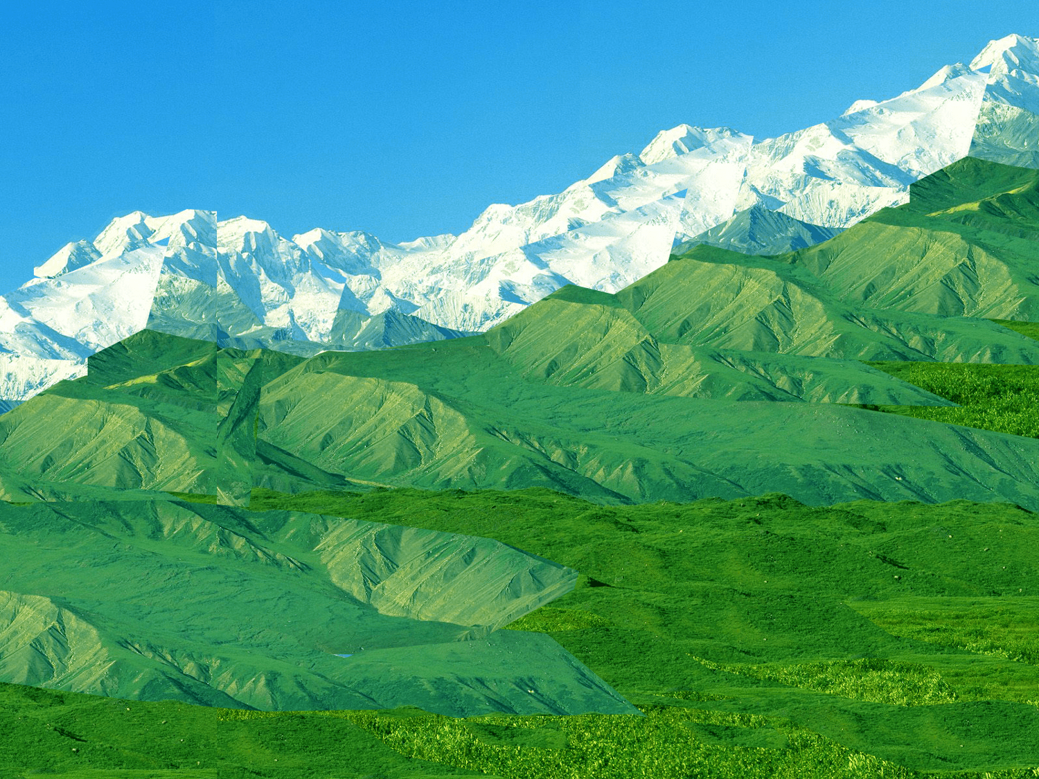 mountains by Petra Cortright