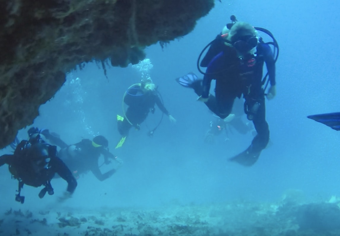 Scuba Diving in Cozumel with Stingrays, Sea Turtles, Coral Caves, and Tropical Fish
