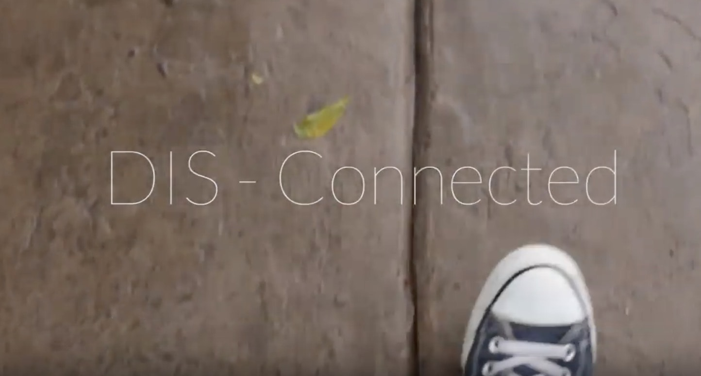 DIS-Connected Video by Matthew T Rader