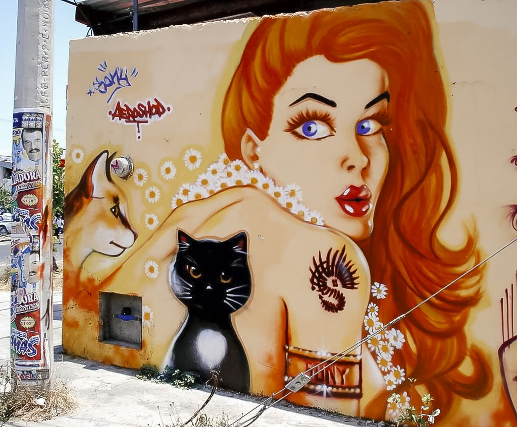 A mural of a redhead woman by street artist Sony Sony Montana in Cancun