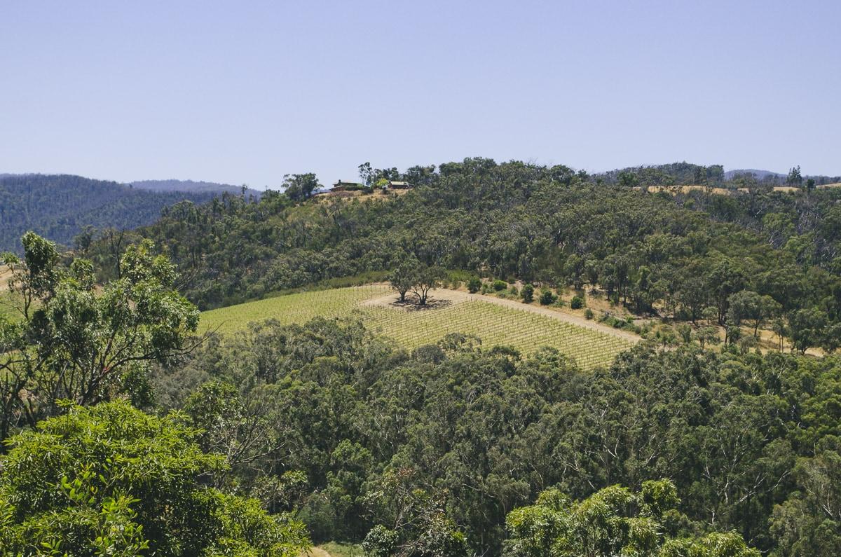 Healesville, Australia