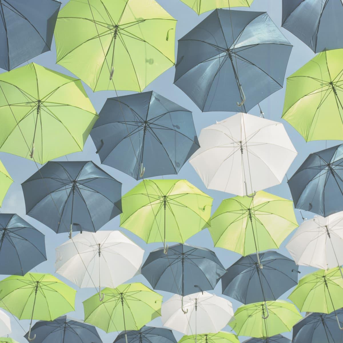 Umbrellas at the State Fair of Texas on Medium Format Film