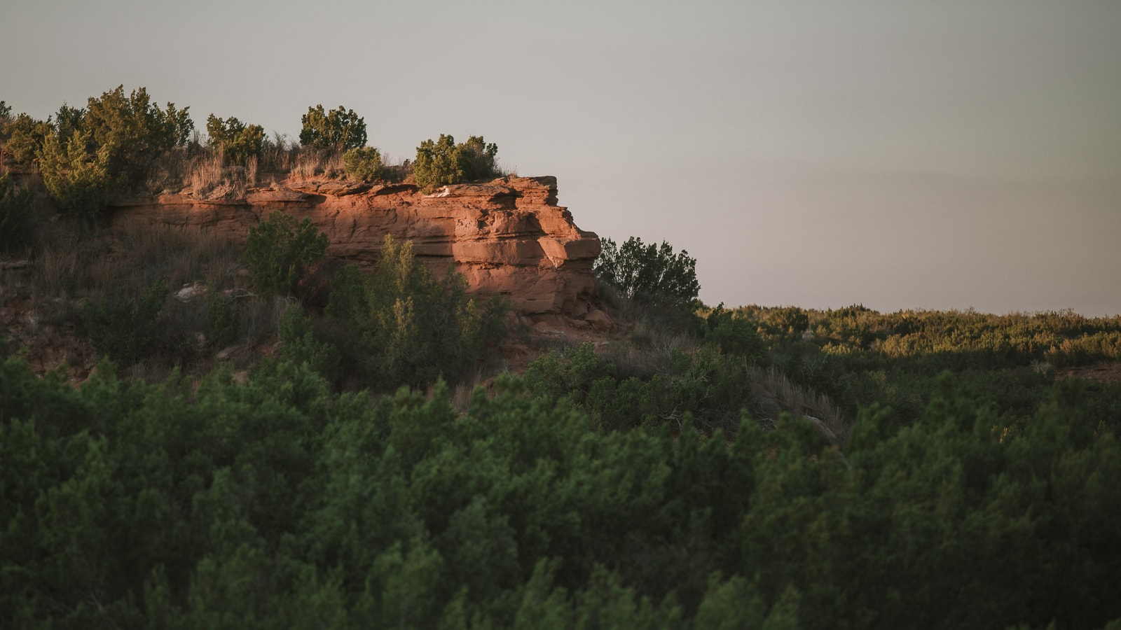 Lion Face Rock Formation at Copper Breaks State Park
