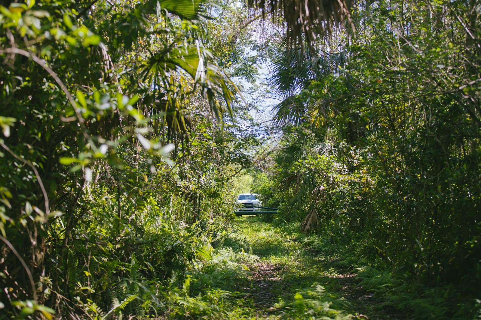 Truck parked at the entrance of the Everglades trail