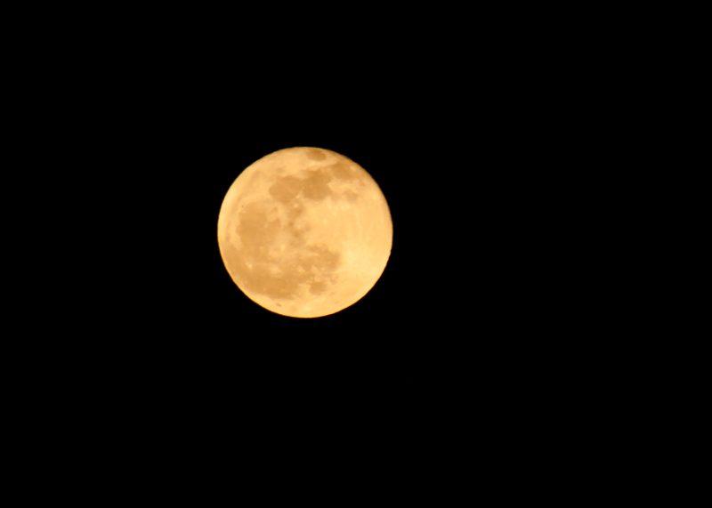 A Full Moon Over Dallas