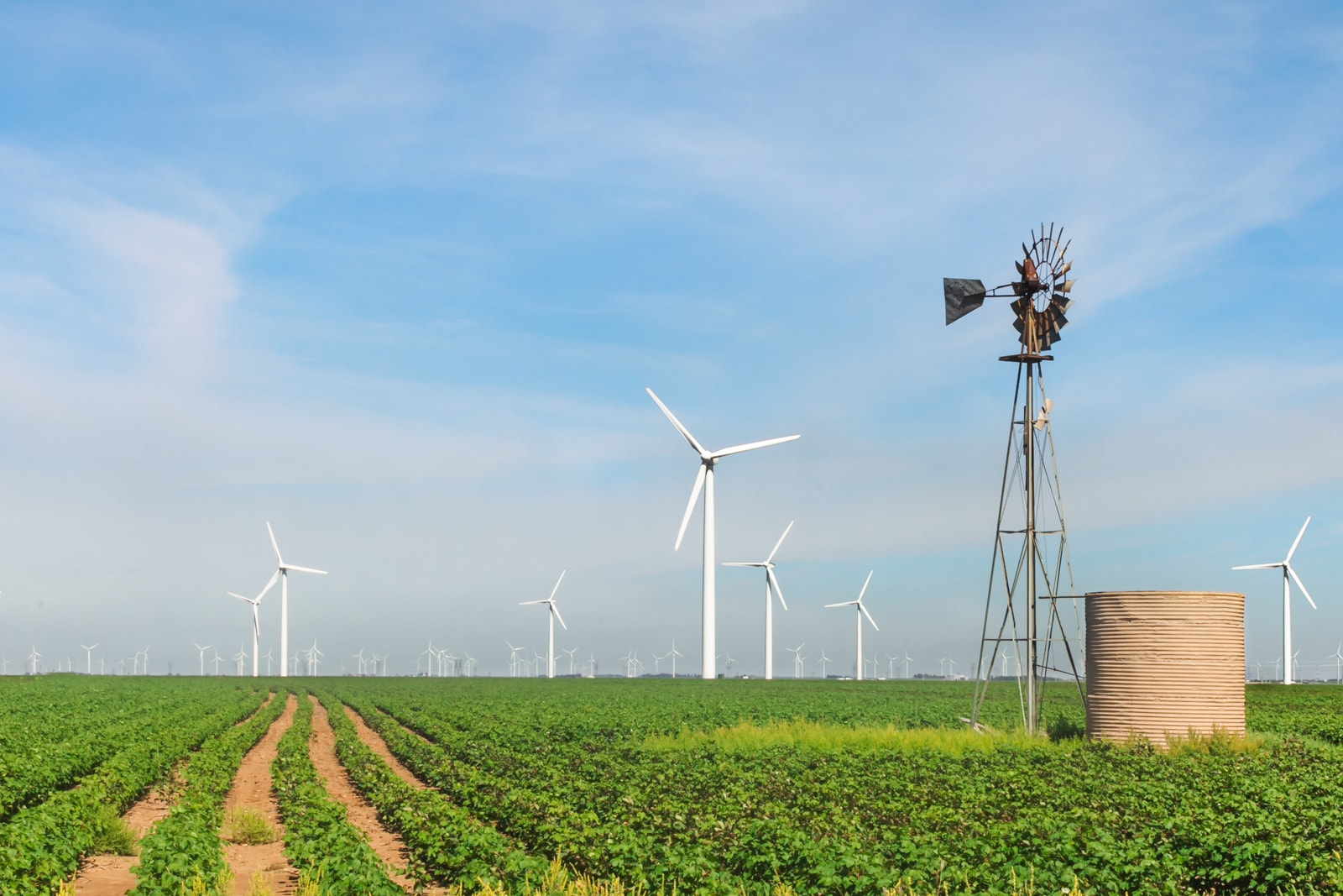 Roscoe Wind Farm in West Texas