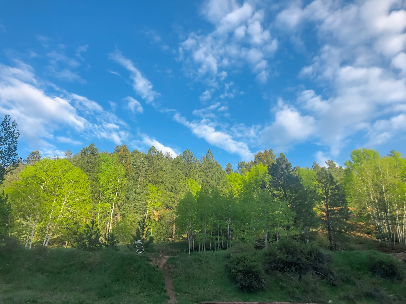 The beautiful mountains, tree, and skies in New Mexico