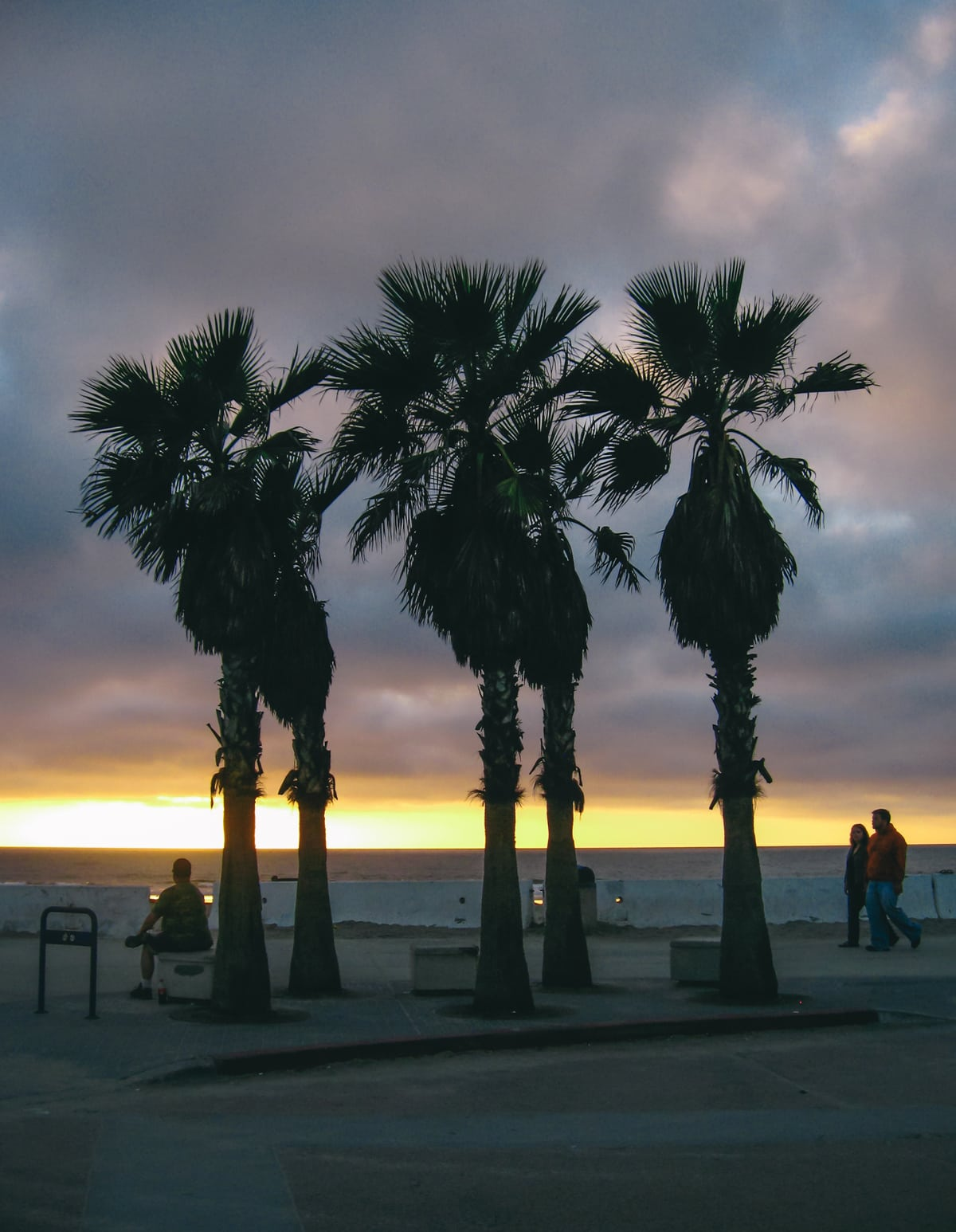 Palm trees and people at Sunset