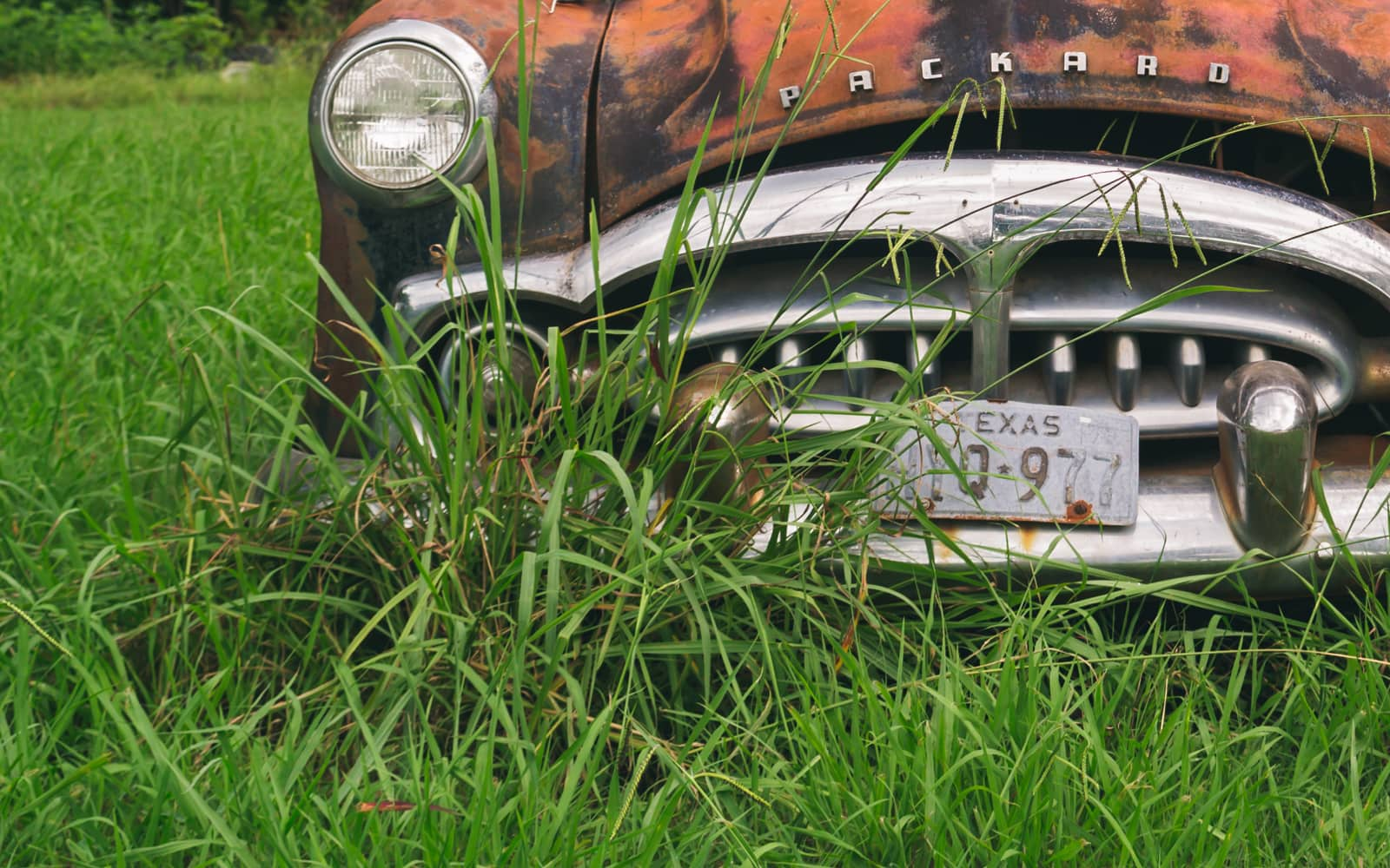 1952 Packard Patrician 400 Abandoned And Deteriorated In A Texas Field
